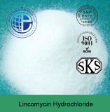 Top Quality Fungistat CAS 859-18-7 Lincomycin Hydrochloride