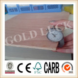Poplar Core Bintangor Plywood for Packing or Furniture