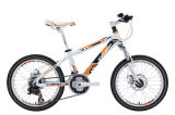 Bicycle (KSBL1071) 3