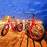 Easy Rider Fat E Bike 48V
