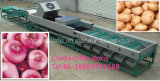 Automatic Fruit Sorting Machine, Onion Sorter Machine