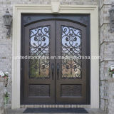 Decorative Wrought Iron Double Door (UID-D020)