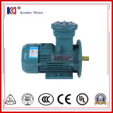 Yb3-160m1-2 Electric (Electrical) AC Induction Ex-Proof Motor with High Efficiency