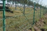 PVC Coated Barbed Iron Wire for Security Fence