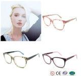 Crystal Color on Sale Acetate Eyeglasses Frame
