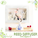 Fragrance Oil Aroma Reed Diffuser with Ceramic for Home Decoration