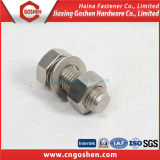 Fastener Bolt and Nut / Hex, Flange, Cap, Wing Head Bolt