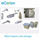 Small Size Combination Blast Freezer Cold Room for Frozen Food and Seafood
