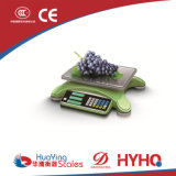 50kg Fashion Modeling Acs Weighing Scale (ACS-811)