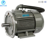 High Efficiency with Ce TUV for Compressors Electric Motor
