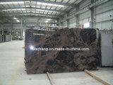 Indian Aurora Granite Gravestone for European Market