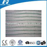 Mono Filament Green Color Scaffold Net (HT-SN-005)