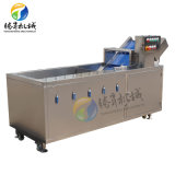 Passion Fruit Cleaner Bubble Spraying Fruit and Vegetable Cleaner Lily Lentinus Edodes Cleaning Machine (TS-X200)