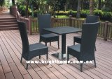 Outdoor Furniture/PE Rattan Furniture/Dining Set/ Wick Furniture/Garden Furniture