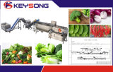 Dehydrated Vegetable Fruits Processing Line