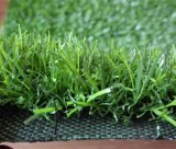 Good Quality and Professional Golf Artifical Grass Carpet