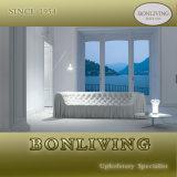 Luxury Living Room Furniture (B23)