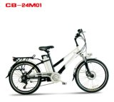 Al-Alloy Frame Li-Lon Battery Electric Bicycle with En15194