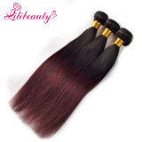 100% Unprocessed Virgin Malaysian Human Hair Ombre Color