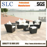 Outdoor/ Garden/ Rattan Sofa Furniture (SC-B1004)