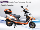 Plug-in Electric Vehicles/Motorcycle with Two Wheels Powered by Electricity