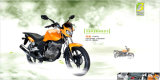 Powerful Street Bike, EEC Bike, HJ150-8A General Motorcycle