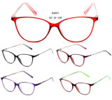 2017 New Design Tr90 Optical Frames Fashion Eyeglasses Eyewear Spectacle