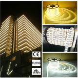AC220V Outdoors Double Line Flexible 5050 LED Strip