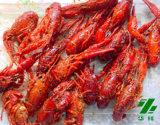China Frozen Cooked Whole Crawfish - China Crawfish, Crayfish