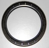 Tg Oil Seal for Leather Machinery