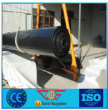0.75mm / 1mm / 2mm HDPE / LDPE Geomembrane