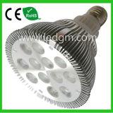 24W High Power LED PAR38 Bulbs
