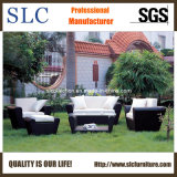 Wicker Sofa Set / Leisure Sofa/Patio Furniture (SC-B1004)
