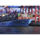 Ocean Shipping Freight From Shenzhen to Jakarta