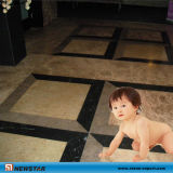 Polished Marble Tile, Marble Stone