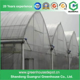 Greenhouse for Hydroponic Nft and Soilless Systems