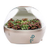 Am: 10 Micro Forest Ecological Air Cleaner Mf-S-8700-B