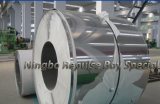 Prime Quality Staineless Steel Coil (for Making Gas Stoves, Pipes, household Appliance)
