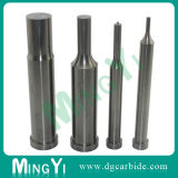 Preicision Tungsten Carbide Pilot Punch with Pointed