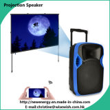 PRO Audio Plastic LED Projection Speaker Cabinet Video Player