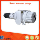China Shanghai Sunny Brand Zjy-1200A Roots Vacuum Pump for Sale/Vacuum Coating Machine Roots Vacuum Pump/Roots Pump for Vacuum Metallizing Machine