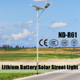 Ce Certificated LED Solar Street Light for 2 Lanes Urban Road Lighting