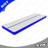2X10m Blue P2 Dwf Inflatable Air Tumble Track