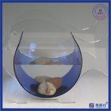 Irregular Round Plexiglass Acrylic Fish Tank