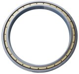 Deep Groove Ball Bearing with Large Dimension (61844M)