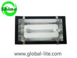 (TL-5103) Induction Tunnel Light