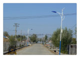 Factory Price 4m-10m Lamp Post with 25 Years Lifetime