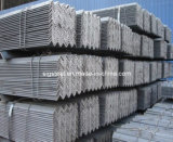 Hot Rolled Euqual Angle Steel Bar for Construction