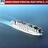 Sea Freight Door to Door From China to Switzerland