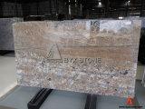 Araras Golden Granite Slab for Flooring & Wall Decoration